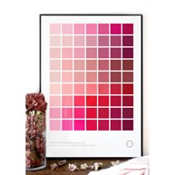 Poster - Color Palette