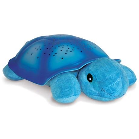 Nattlampa stjärnhimmel – Sköldpadda