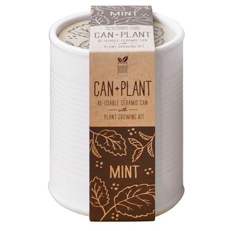 Odlingsset – Can + Plant Mynta