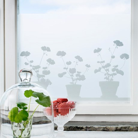 Fönsterfilm – Pelargoner 48 x 120 cm