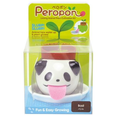 Odlingsset - Peropon (liten), Panda - Basilika