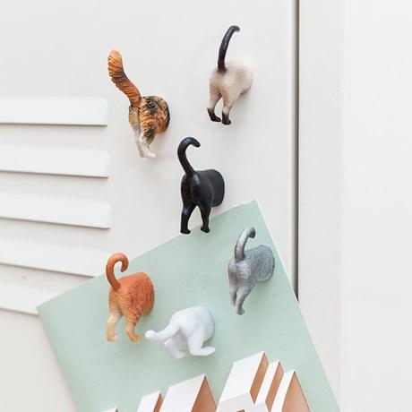 Kylskåpsmagneter - Katter (6-pack), Multi