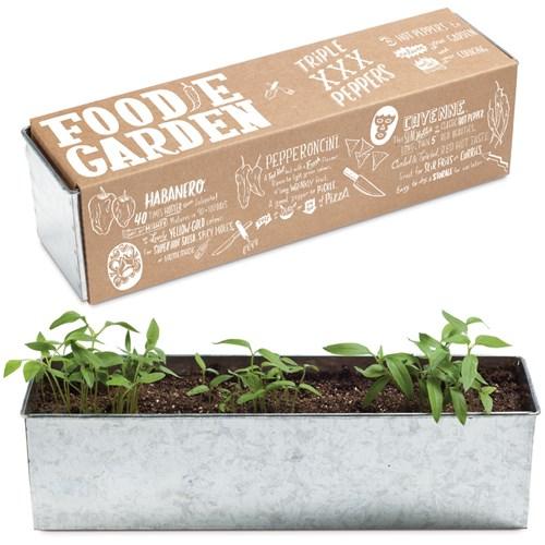 Odlingskit - Foodie Garden (3 plantor), Peppar