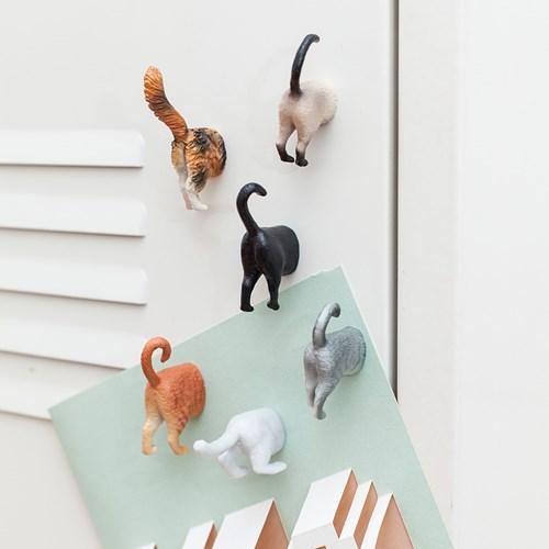 Magneter - Katter (6-pack), Multi